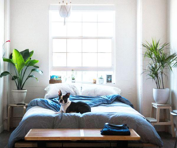 Schlafzimmermöbel | Woodkings Shop