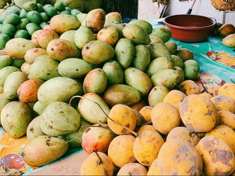 media/image/Mangofrucht.png