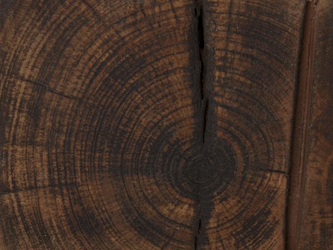 Hirnholz-Stirnholz