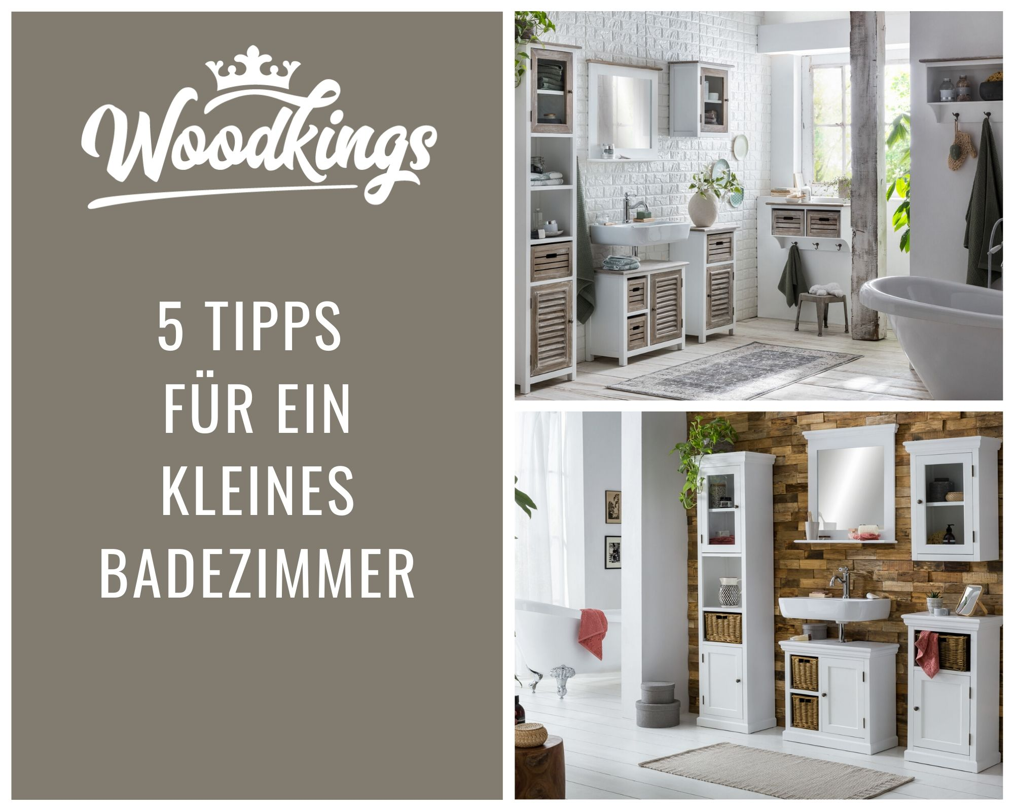 TRENDS & NEWS | Woodkings Shop